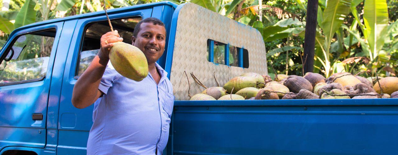 Kokosnussproduzent_SriLanka
